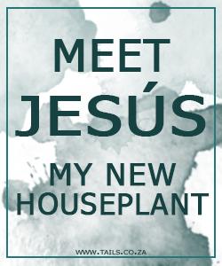 Meet Jesús - tails.co.za